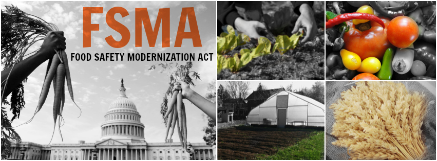 Food Safety Modernization Act (FSMA)